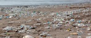 Plàstic a la platja