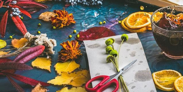 Autumn workshops