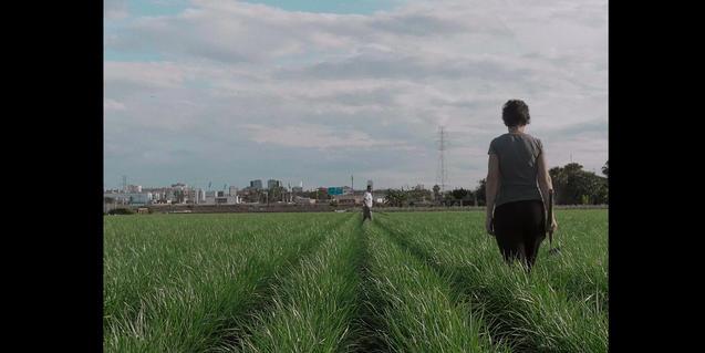 'Camagroga', uno de los filmes de la sección oficial