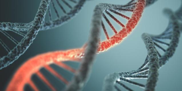 Imagen de una simulación de moléculas de ADN