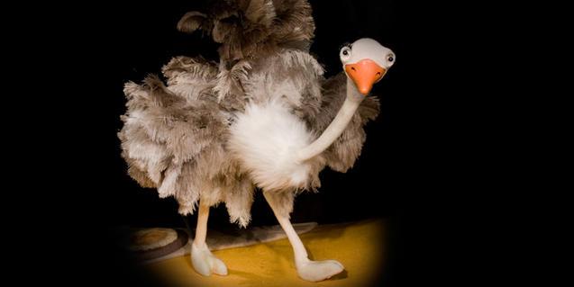 Un avestruz, durante la función.
