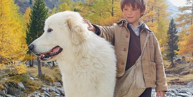 Los dos protagonistas, niño y perra