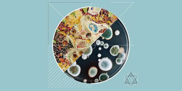 Bienal Ciudad y Ciencia 2019