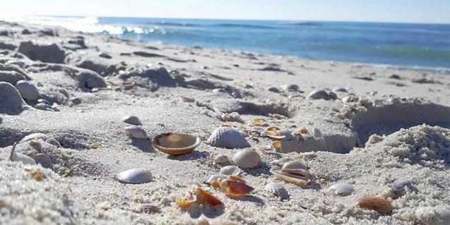 Fotografia de platja i mar