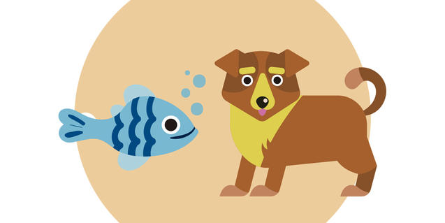 Il·lustració per a 'Contes d'un ca i un peix'.