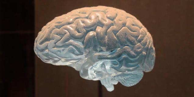 Imagen de una figura de un cerebro