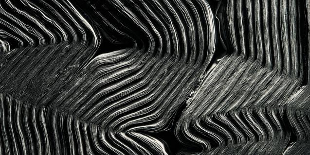 'La bellesa de les línies'