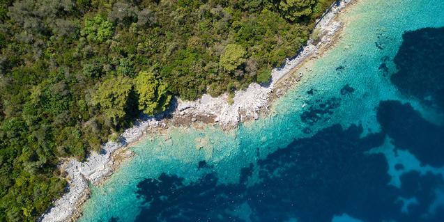 Ecosistemas marinos y terrestres
