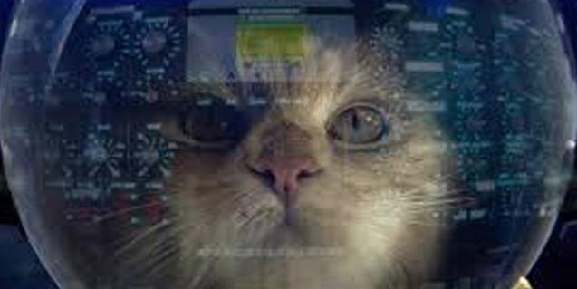La imagen de un gato con casco de cosmonauta que anuncia el concierto