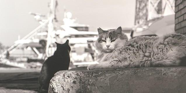 Una de las fotografías de la exposición en blanco y negro