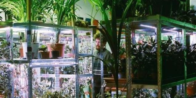 L'artista envoltat de les plantes de l'exposició