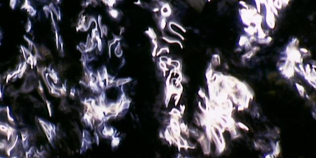 Una de les imatges abstractes que forma la superfície de l'aigua i que l'artista retrata en les seves obres