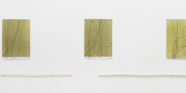 Algunas de las imágenes creadas por Julia Spínola para la exposición