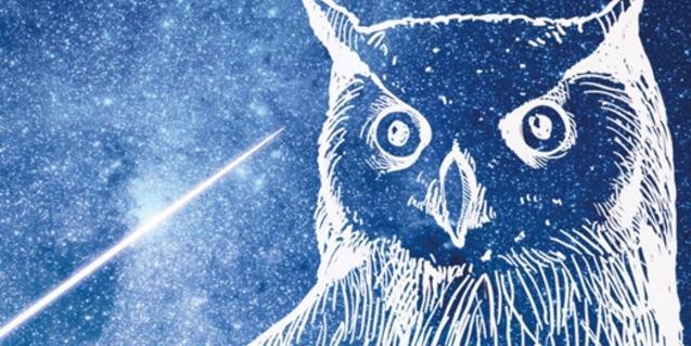 El dibujo de un búho sirve para ilustrar el cartel de la convocatoria
