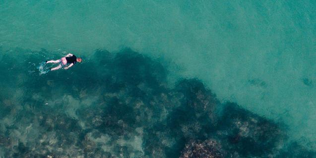 Un bañista con snorkel visto desde arriba