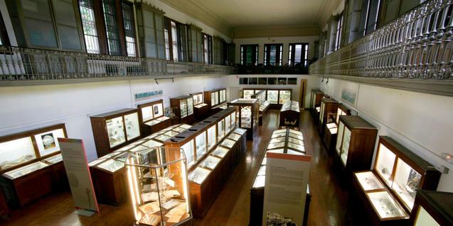Interior del Museo Martorell