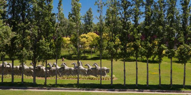 Fotografia del parc de la trinitat