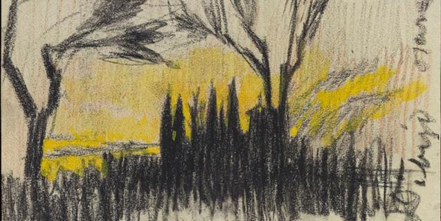 Imatge del cartell del programa 'Museu Picasso Dibuixa'