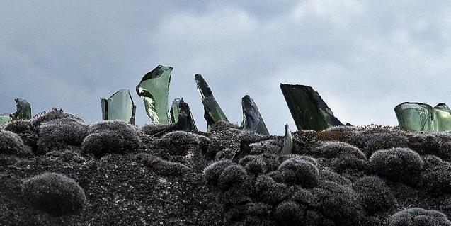 Fotografia d'uns vidres col·locats sobre una paret per impedir que s'hi enfilin