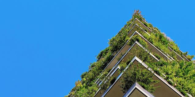 Un edificio recubierto de plantasrecobert de plantes