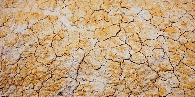 Imatge d'un sòl eixut i esquerdat per la calor
