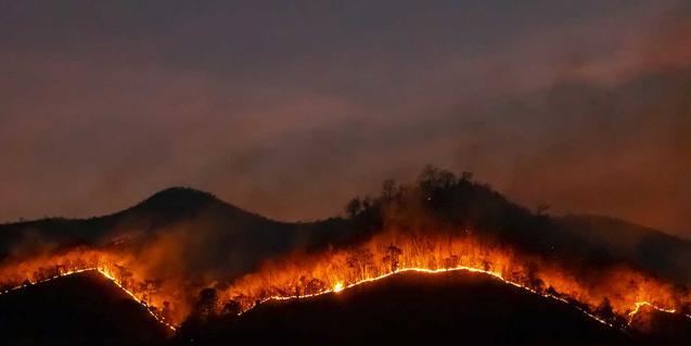Foto d'un incendi forestal