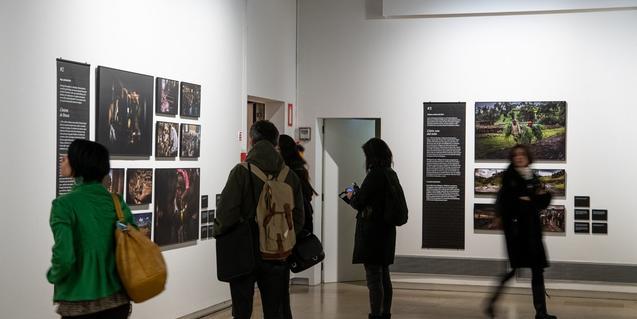 Visitants a la nova exposició del Palau Robert