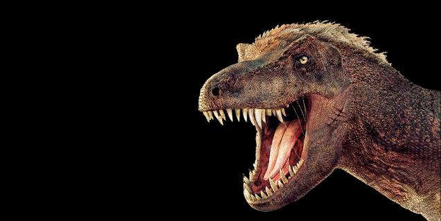 Un Tyrannosaurus rex