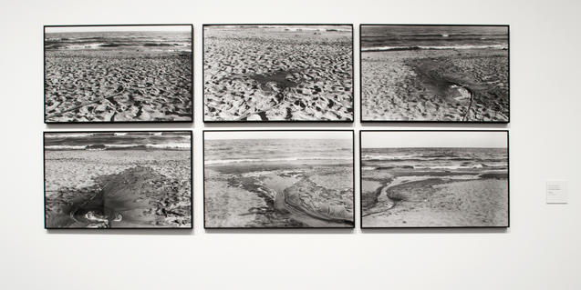 Imatge d'una obra de l'exposició