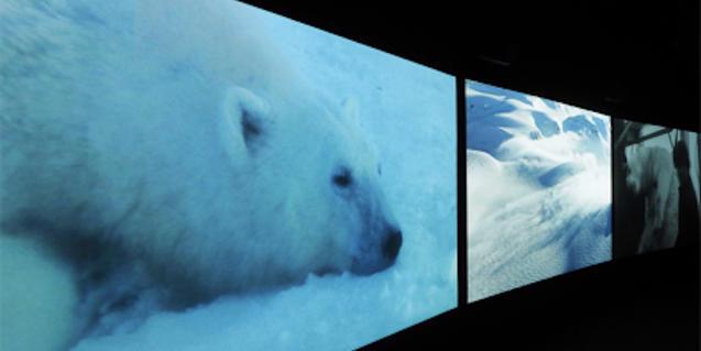 ©Smoking Dogs Films; Cortesia de Smoking Dogs Films i Lisson Gallery