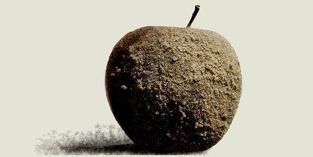 La imatge d'una poma seca i coberta de floridura serveix de cartell per anunciar l'espectacle