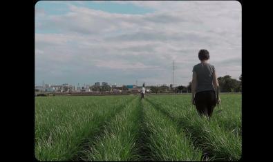 'Camagroga', un dels films de la secció oficial