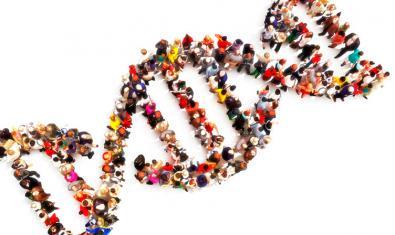 Imatge d'un tros d'ADN fet amb persones
