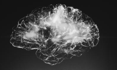 Imagen de una recreación artística de un cerebro