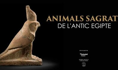 Animals sagrats de l'antic Egipte