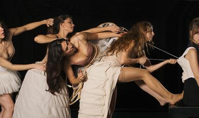 Imagen de la obra Barbas de Ballena