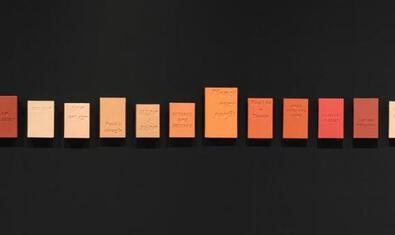 Una de las obras de Eugenio Merino que se pueden ver a la exposición muestra una serie de libros con lemas ecologistas grabados en la portada