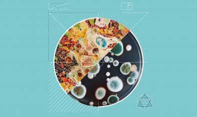 Imagen gráfica de la Bienal