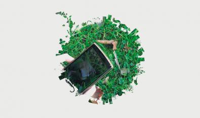 Imatge de la biomarató