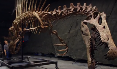 Spinosaurus: el gigante perdido del Cretáceo