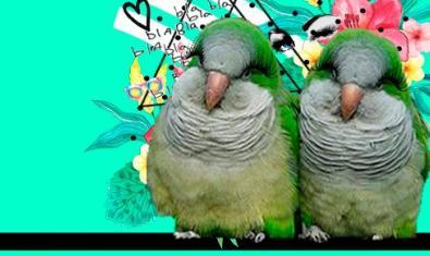 Cartel de 'Calladitas estáis más guapas'