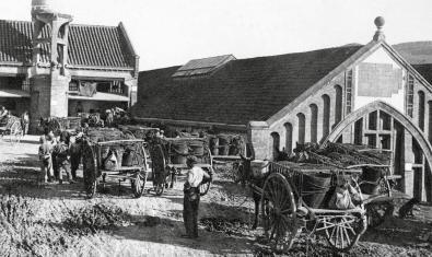 Una de les imatges antigues de l'exposició, en aquest cas de l'àmbit dedicat a les cooperatives agràries