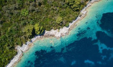 Ecosistemes marins i terrestres