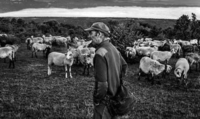 La exposición recoge la vida de los últimos pastores del Montseny