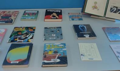 Un aspecte de l'exposició amb diversos volums obra dels autors que formen part de la mostra