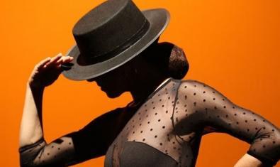 Una imagen promocional del espectáculo 'Guitarra y flamenco'