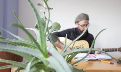 L'artista retratat tocant la guitarra amb una planta en primer pla