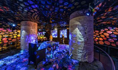 '10D Experience', la nova experiència immersiva de la Casa Batlló