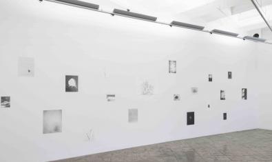 Un aspecte de la galeria ProjecteSD amb les obres de Jochen Lempert exposades
