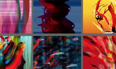 Un collage mostra algunes de les imatges que es poden veure a l'exposició